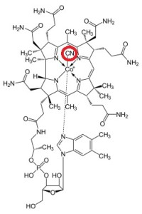 Cyanocobalamin1